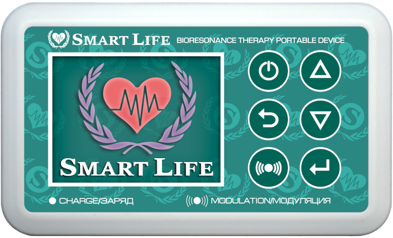 Smart Life model Lite (simplified model)